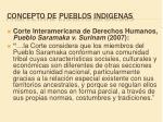 concepto de pueblos indigenas2