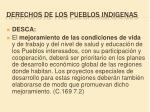 derechos de los pueblos indigenas1