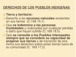 derechos de los pueblos indigenas10