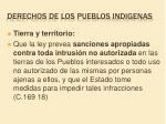 derechos de los pueblos indigenas11
