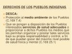 derechos de los pueblos indigenas3