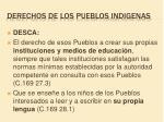 derechos de los pueblos indigenas4