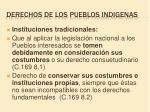 derechos de los pueblos indigenas5