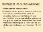derechos de los pueblos indigenas6