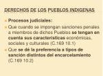 derechos de los pueblos indigenas7