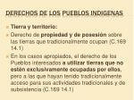 derechos de los pueblos indigenas9