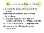 responsibilities division of labor