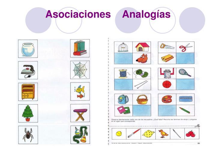 Asociaciones    Analogías