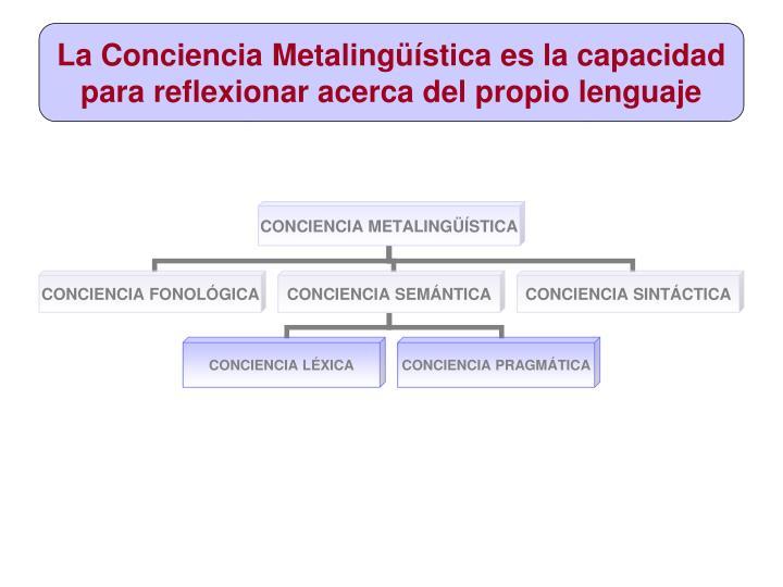 La conciencia metaling stica es la capacidad para reflexionar acerca del propio lenguaje
