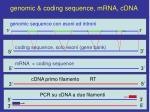 genomic coding sequence mrna cdna