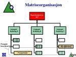 matriseorganisasjon