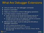what are debugger extensions