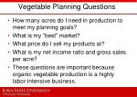 vegetable planning questions