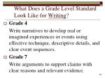 what does a grade level standard look like for writing