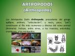artr podos arthropoda