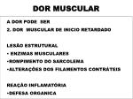 dor muscular3