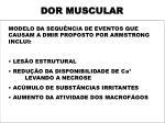 dor muscular4