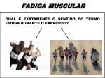 fadiga muscular1