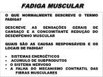 fadiga muscular2