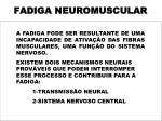 fadiga neuromuscular