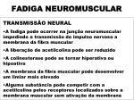 fadiga neuromuscular1