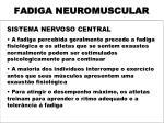 fadiga neuromuscular4