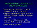 patogenesi delle vasculiti immunocomplessi