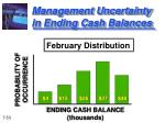 management uncertainty in ending cash balances1