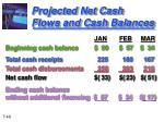 projected net cash flows and cash balances