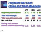 projected net cash flows and cash balances1