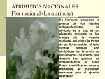 atributos nacionales flor nacional la mariposa