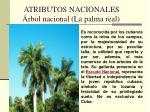 atributos nacionales rbol nacional la palma real