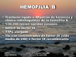 hemofilia b