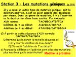 station 3 les mutations g niques p 203