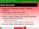 risk pyramid