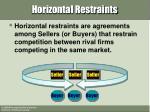 horizontal restraints