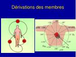 d rivations des membres