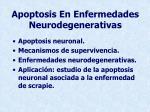 apoptosis en enfermedades neurodegenerativas5