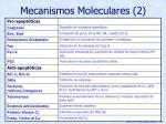 mecanismos moleculares 2