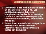 construcci n de cladogramas