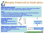 b iosafety framework in south africa