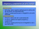 objetivos y componentes de este trabajo