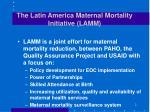 the latin america maternal mortality initiative lamm