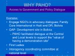 why paho access to government and policy dialogue