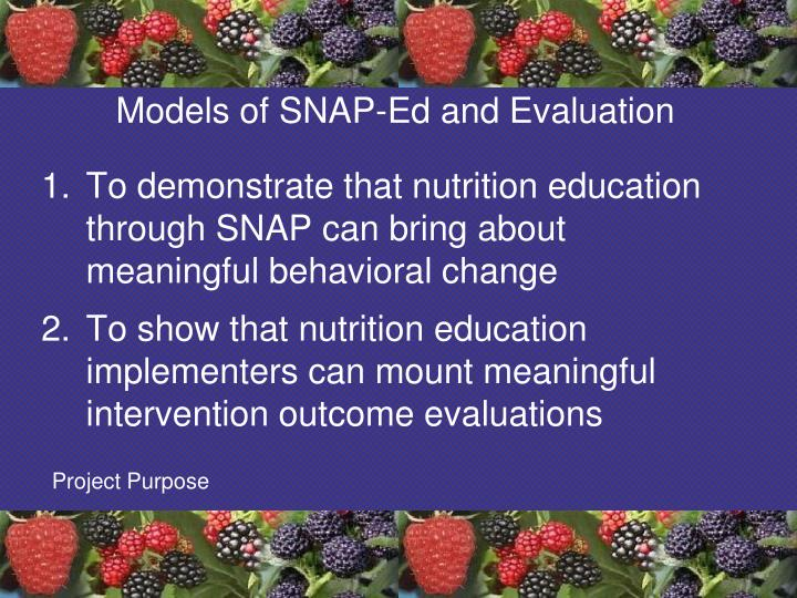 Models of SNAP-Ed and Evaluation