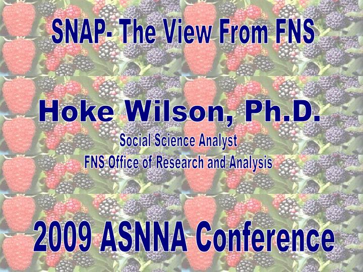 SNAP- The View From FNS