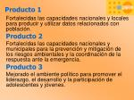 producto 12