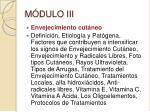 m dulo iii
