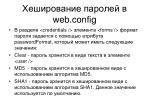 web config2