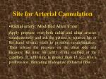 site for arterial cannulation